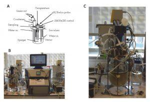 ECSIM_bioreactor